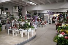 vendita-fiori-e-piante-online